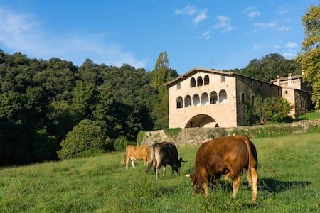 Cabana Callís 2/6p Garrotxa Pirineo - La Vall de Bianya - Blockhütte