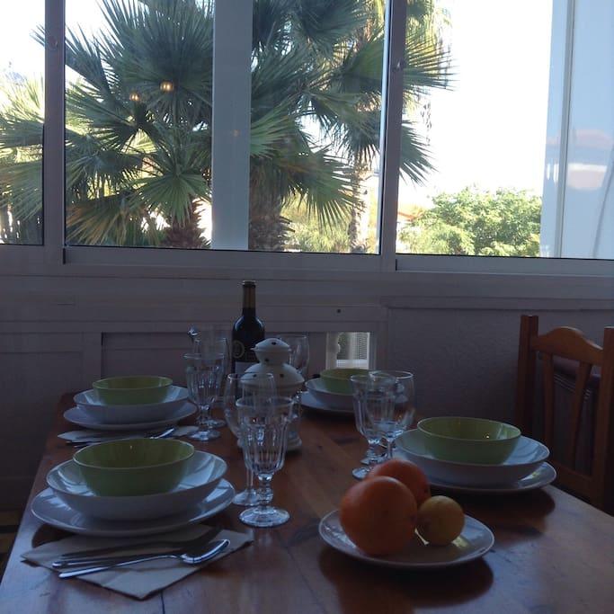 За окном террасы пальмы и бассейн
