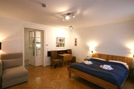 Nr 5 Apartment Biedermeier house, 1070 Vienna - 维也纳 - 公寓