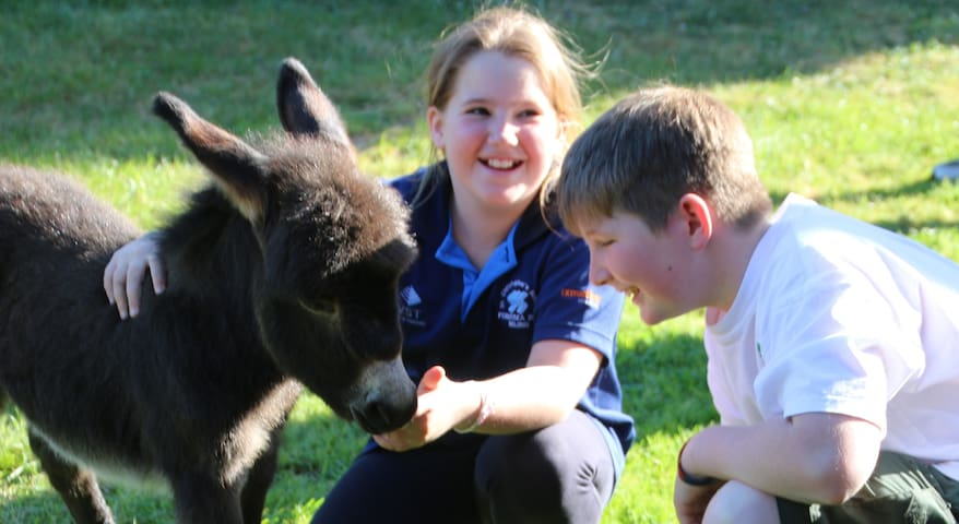Donkey Tales Farm Cottages-Simpsons - Maryborough Vic - Chatka w górach