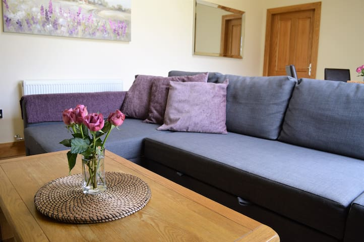 Fabulous apartment, close to city, free parking