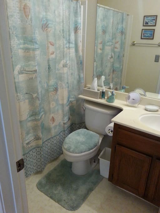 private full bathroom, partially upgraded