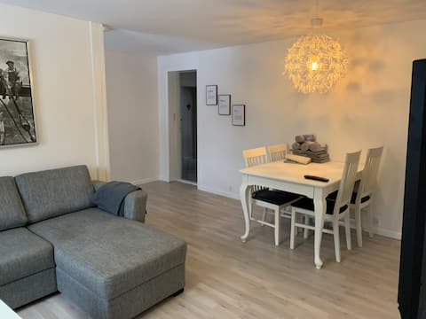 NEWLY renovated apartment close to Outlet Center.