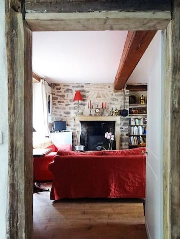 Large charming flat in an old house - Semur-en-Auxois - Lejlighed