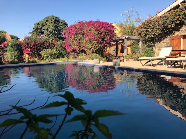 Chambre - Villa Castel au coeur de l'île de Gorée