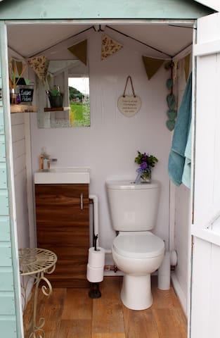 Flushing loo!!