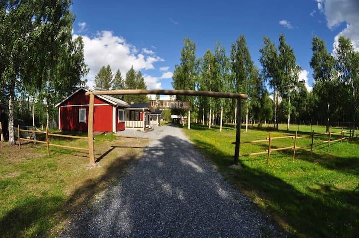 Swedish Lodge Älvsbyn