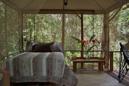 The Peaceful Dragonfly Cabin - Pāhoa - Cabin