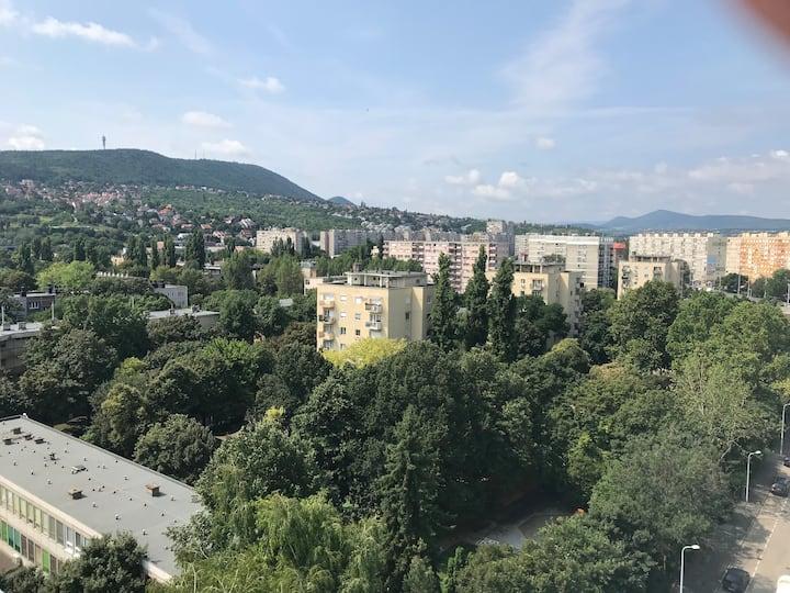 Apartment Simon- Budapest- Hungary