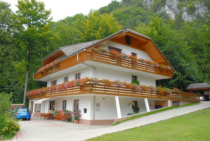 Superior Apartment With 3 Balconies - Zirovnica - Huoneisto