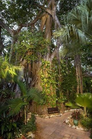 1BR #405 Banyan Resort Key West, FL
