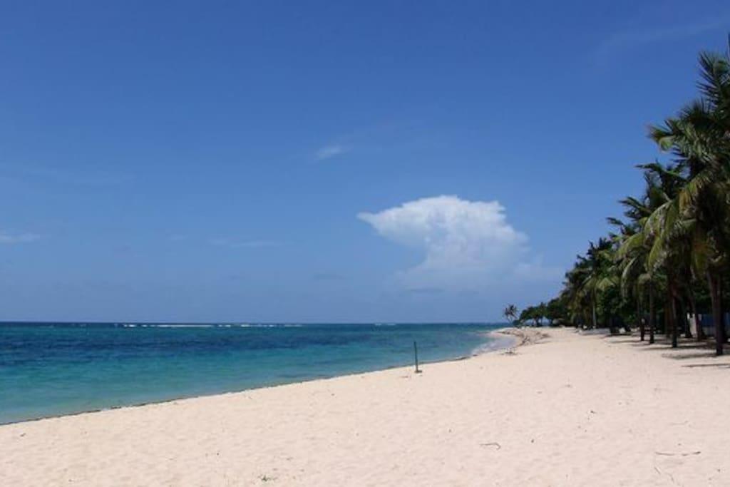 Plage du centre ville (15 minutes à pied de l'appartement) des kilomètres de plages