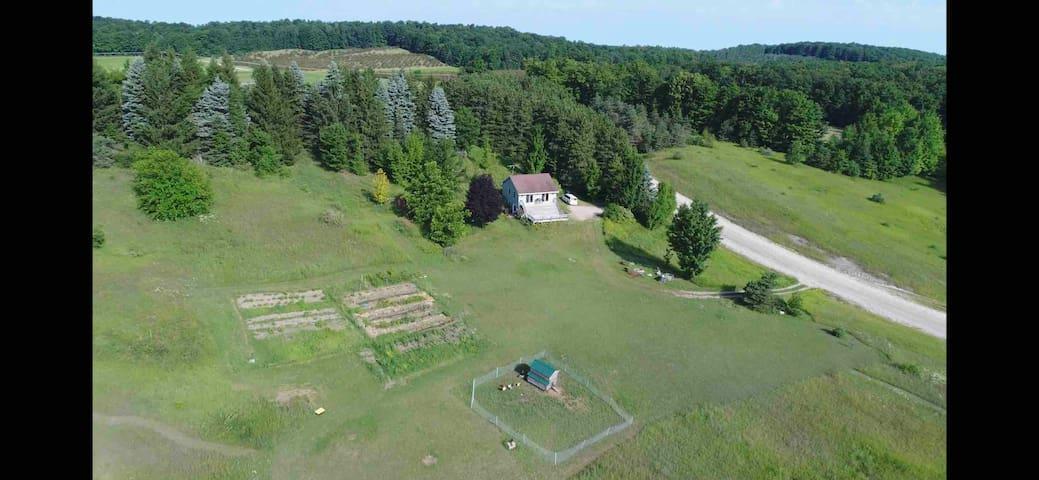 Enjoy 20 acres of beautiful Leelanau County!