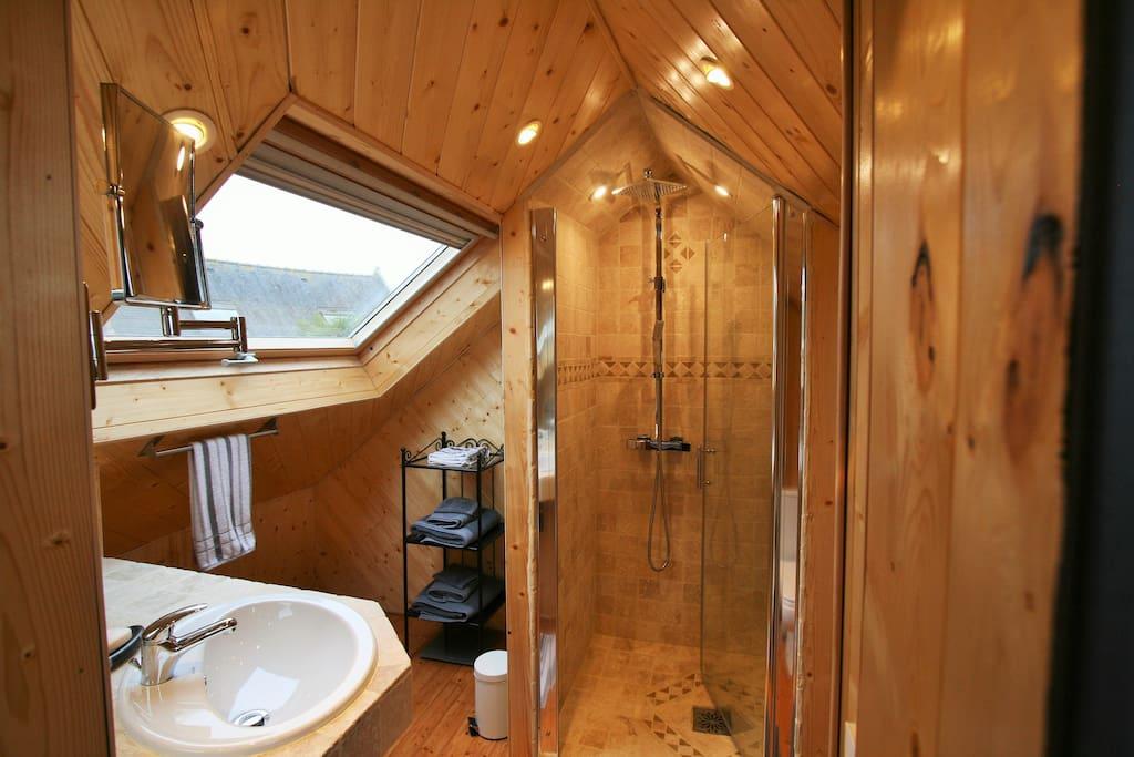 Salle d'eau marbre + WC