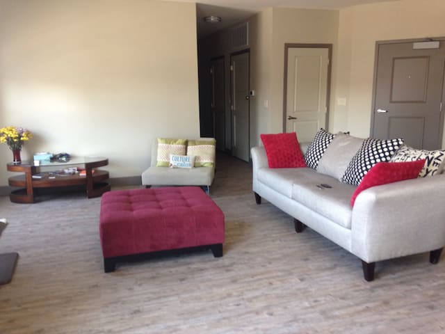 Space in modern apartment in massave downtown Indy - Indianapolis - Byt