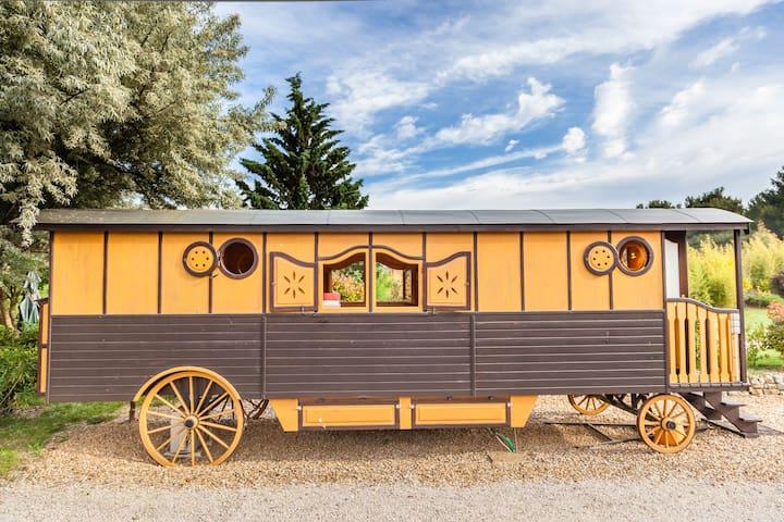 atypic studio  charming caravan