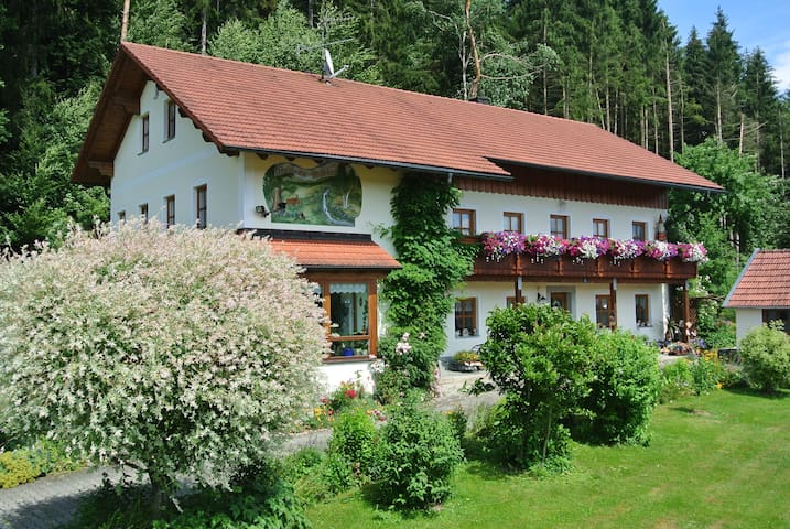 Haus am Waldrand - Grafenau - Appartement