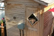 Try out our Finnish sauna for the European experience.