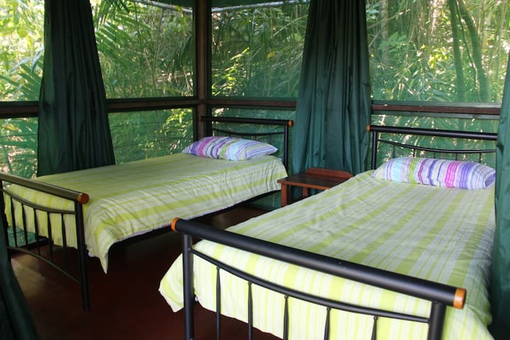 Rainforest Hut - Twin Room (shared bathroom)