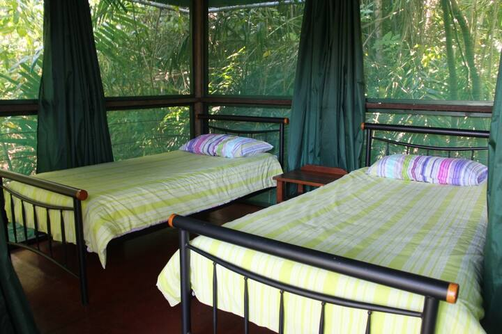 Rainforest Hut - Twin Room (shared bathroom)