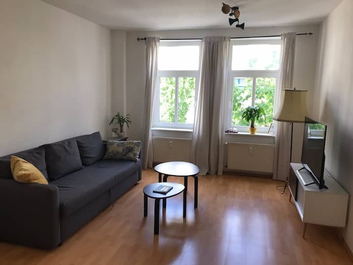 Privat and cozy Leipzig apartment in Ost