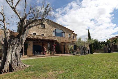 Casa del siglo XVIII para 20 personas, piscina - Saus, Camallera i Llampaies