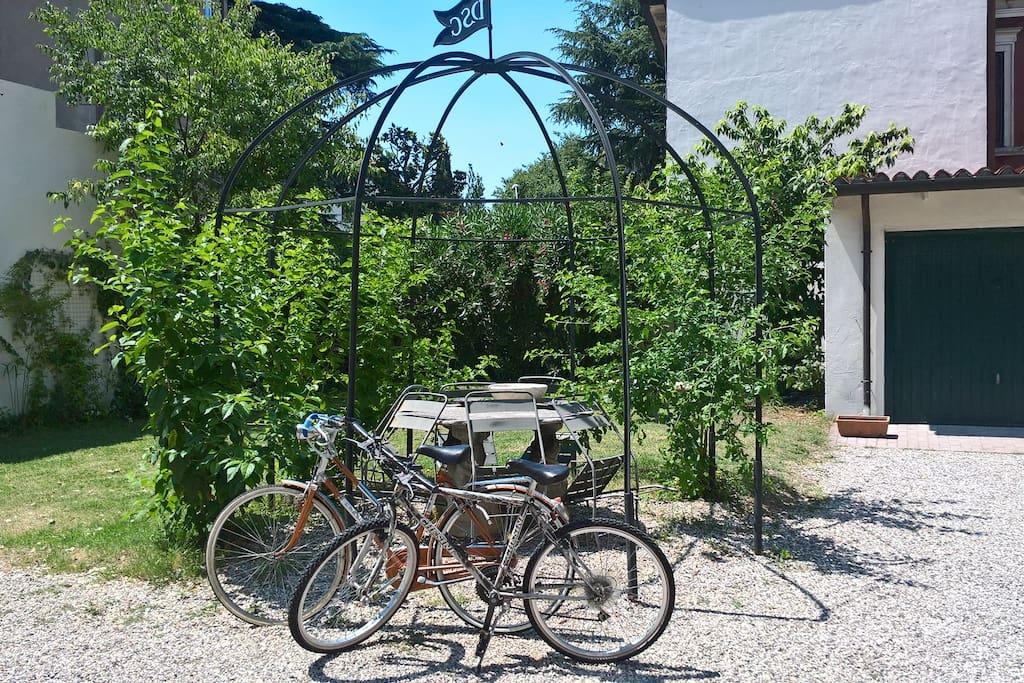 Free bikes rental