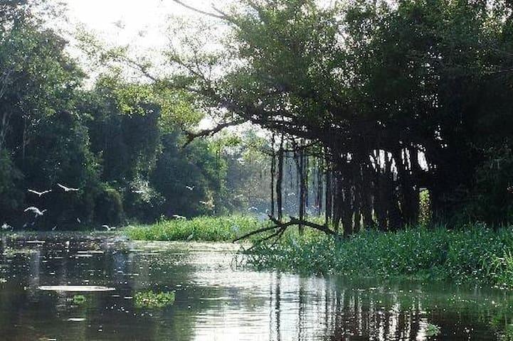 Muyuna, Great Amazonas adventure!