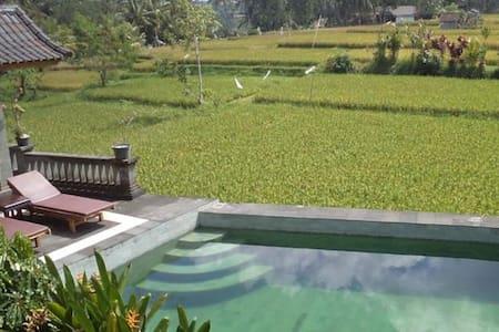 Fan Room @Ala's Green Lagoon Ubud 1 - Ubud - Bed & Breakfast