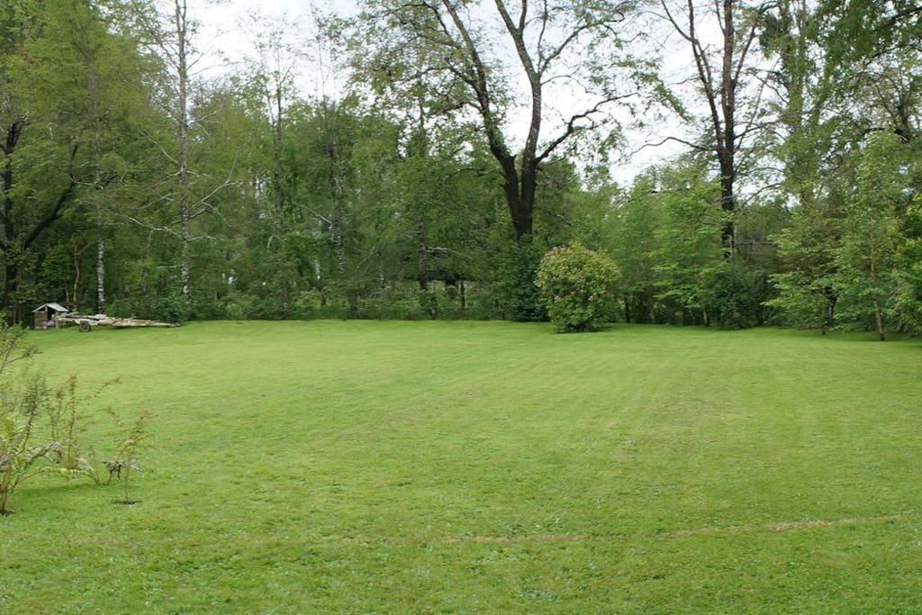 el prado del jardín
