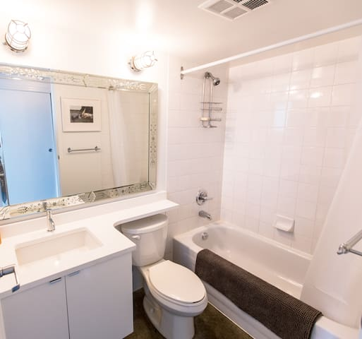 One bathroom with tub and shower. Shampoo and Conditioner are provided, along with moisturizer, liquid and bar soaps, Epsom salts and hairdryer.