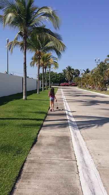 puedes salir a caminar con tu mascota tranquilamente sin ser molestado.