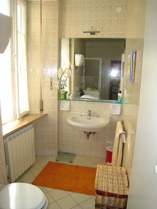 The bathroom: sunny, spacious, with washing machine, extra closet space and shower.