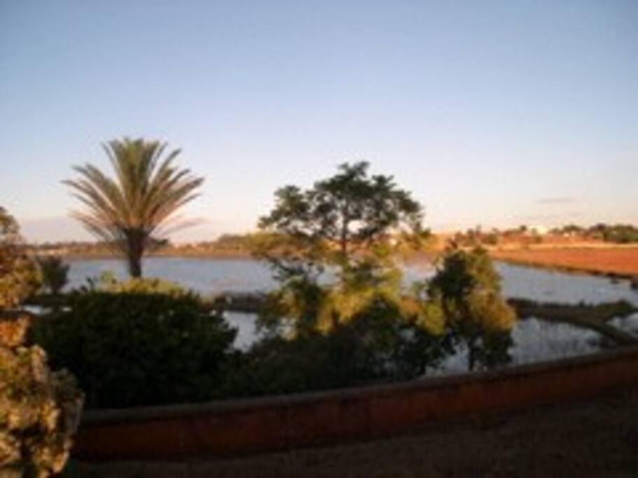 Vu du lac a partir de la propriété