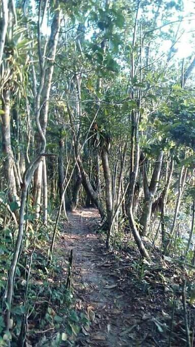 """trilha na praia de Camburizinho, com vista para a praia de Camburi com parada """"obrigatória"""" (vide próxima foto)"""