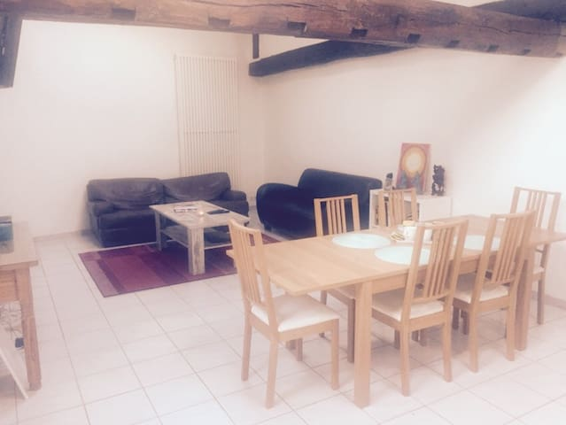 Nice flat for rent FESTIVALPERIODE - Aarschot - Apartament