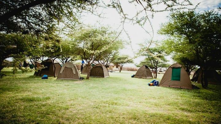 Camp at the Maasai Giraffe Eco camp