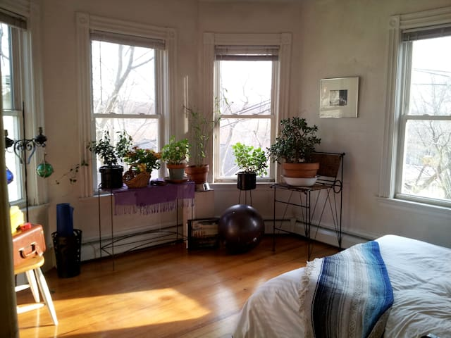 Urban oasis, wonderful location! - JAMAICA PLAIN  - Leilighet