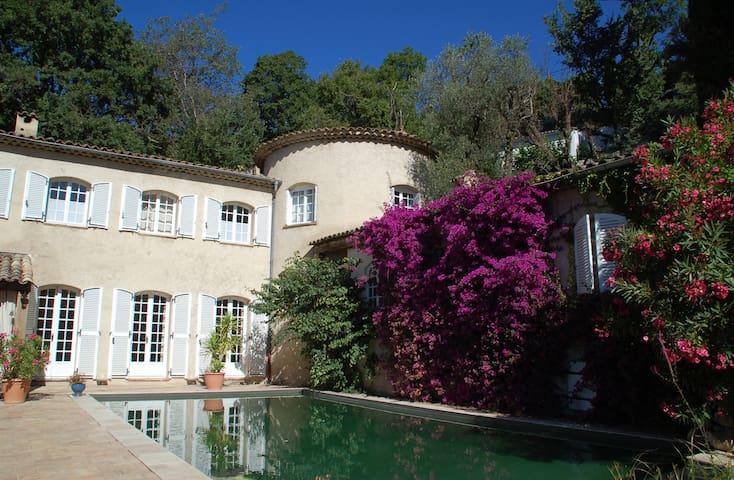 Le Mazet des Tourettes - Maison d'hôtes - Violette