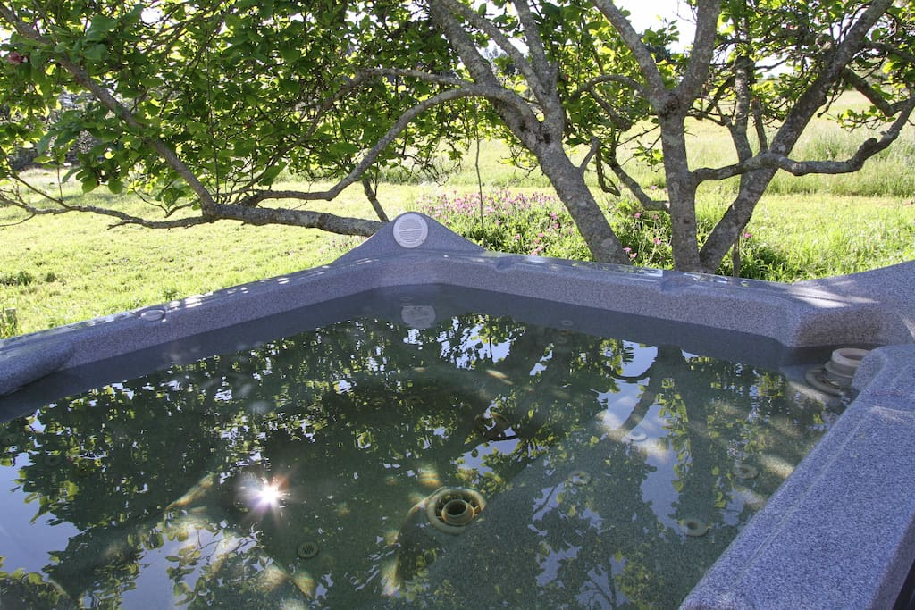 hot tub under the magnolia tree