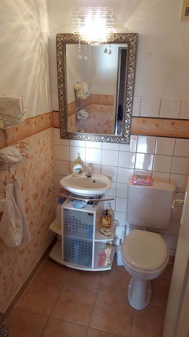 This will a private WC for the guest. It is clean and all you need is available