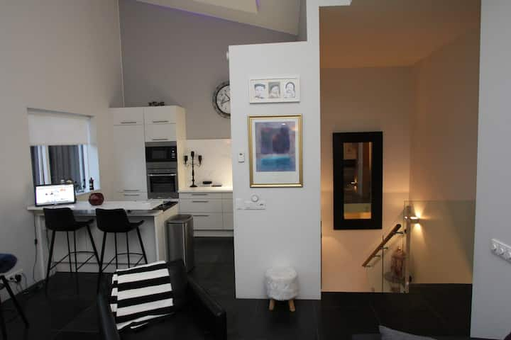 Luxurious family home in Reykjavik - HG7732