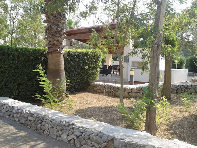 Casette Camardia 2 - Sava - House