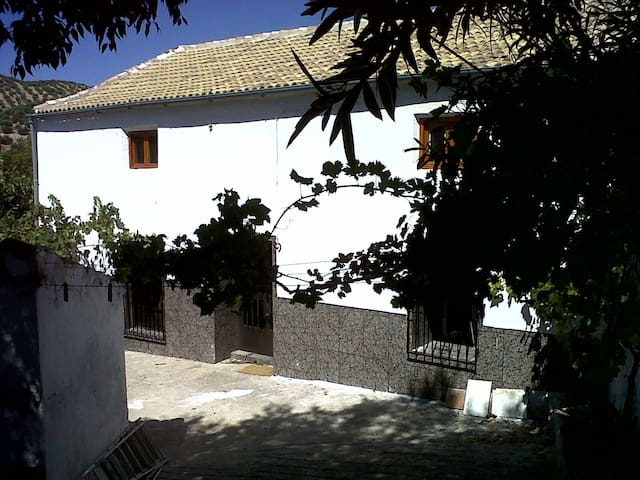 Rustic Andalucian village house.