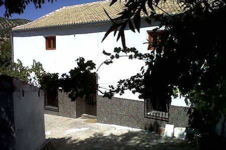 Rustic Andalucian village house. - La Ribera Alta