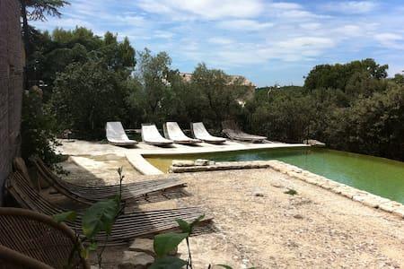 Provence discovery - Cabrières-d'Avignon