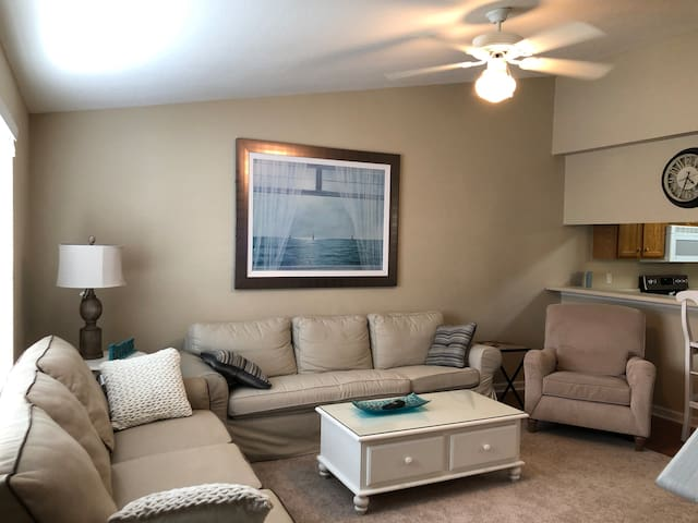 Spacious Condo 1/1 & private use of  living space.