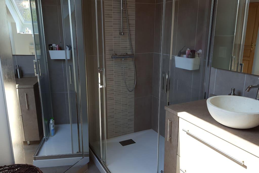 Salle de bains: douche et toilettes
