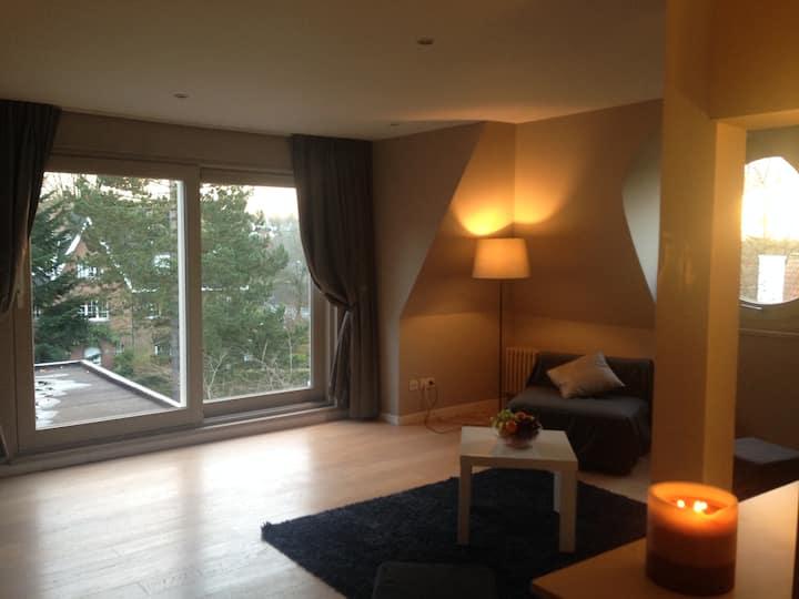Spacious bedroom in Brussels suburb