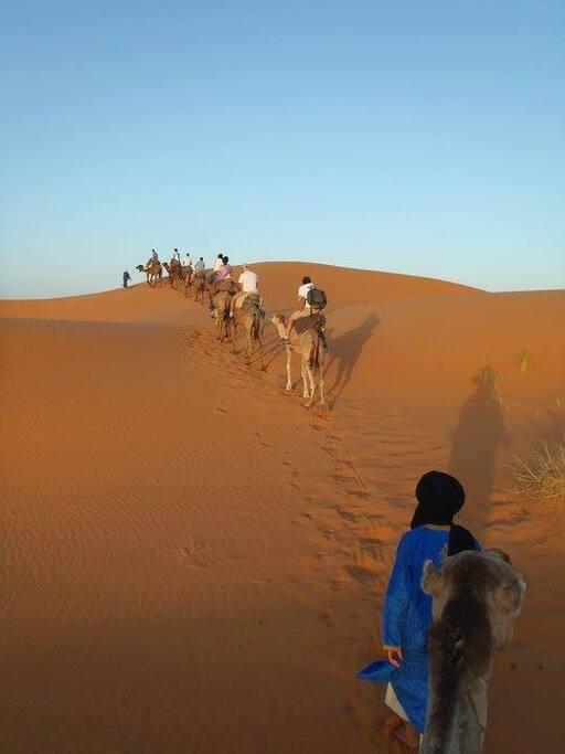 Escursione nel deserto